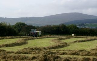 Making hay and electricity while the sun shines